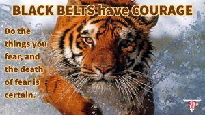 black-belts-have-courage