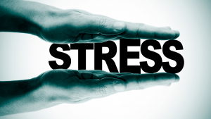 martial arts helps with stress