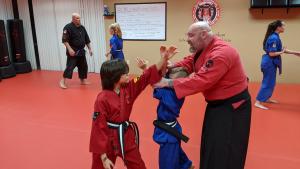 professional martial arts instruction