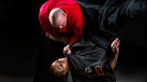 martial arts mesa