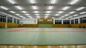 An empty clean dojo