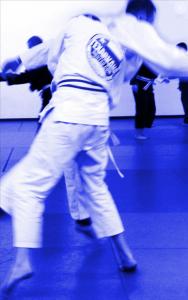 Texarkana Jiu Jitsu BJJ street fight self defense training