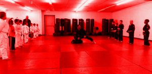texarkana BJJ kids fitness, weight loss, confidence martial arts